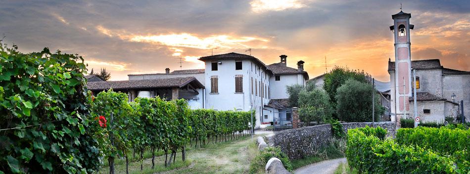 Borgo con le vigne